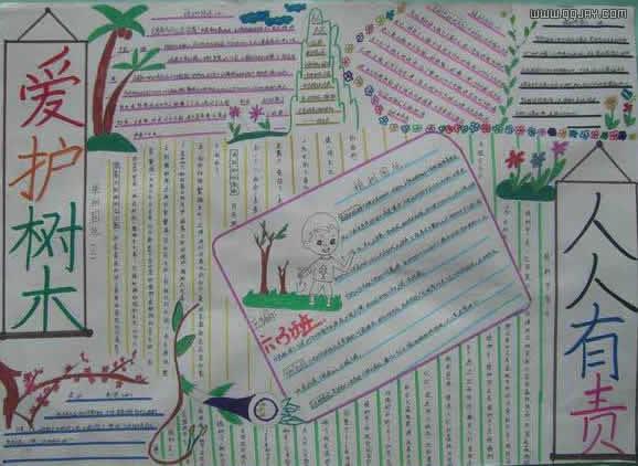 植树节板报设计:爱护树木