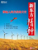 《新东方精神》2008年第2期 (总第8期)