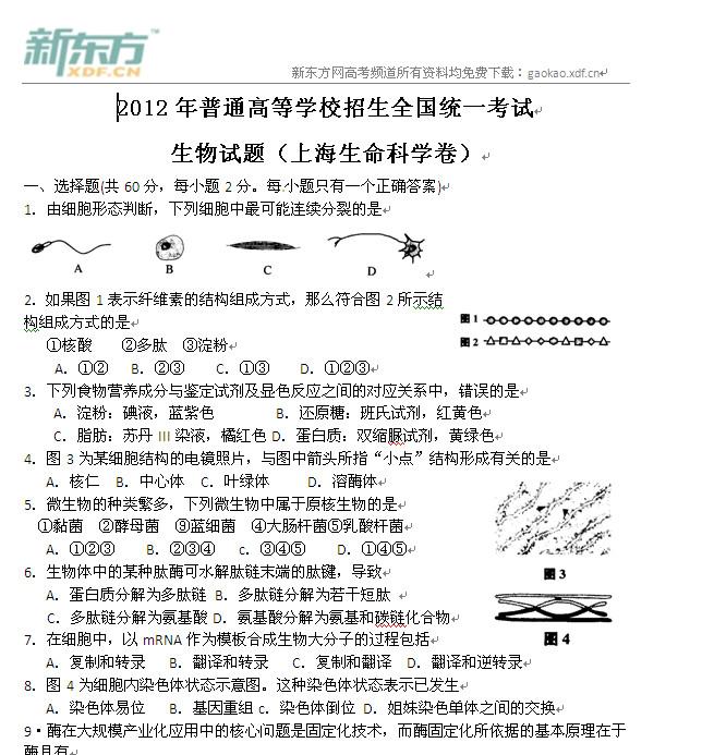 2012上海高考生物试卷下载,2012上海高考生物试题 2012上海高考生物试题,2012年上海高考生物试卷下载,2012年上海高考生物试题,