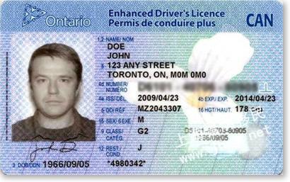 美国驾照翻译模板