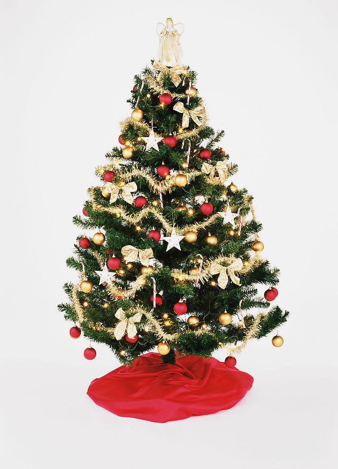 圣诞节卡通图片 圣诞树图片(图组)