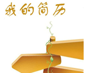 2014小升初简历