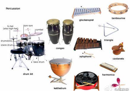 英语分类词汇:乐器(图解)