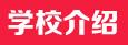点击查看陕西科技大学镐京学院详细信息