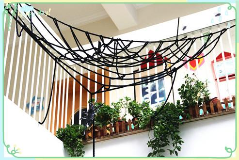 满天星幼儿园玩转万圣节:蜘蛛网