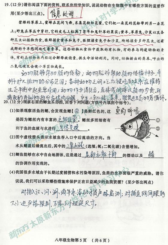 合肥新东方1对1学习中心解析初二初中13-14学生物北城太原几所有图片