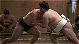 Sumo in decline 相扑走下坡路