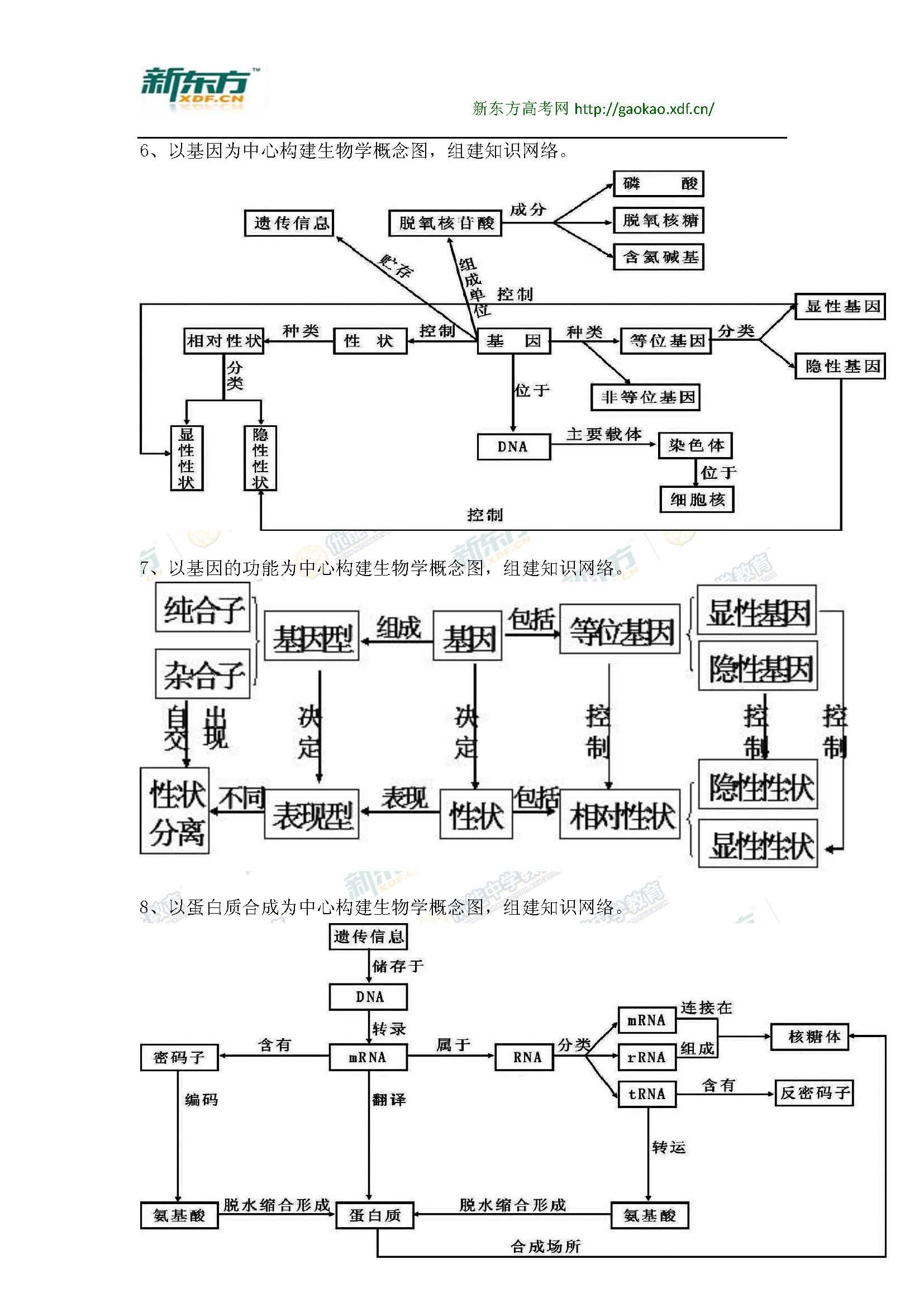 高中生物知识点梳理图总汇_新东方网_第3页