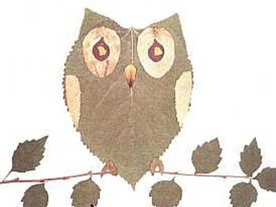 树叶贴画作品欣赏 猫头鹰