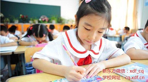【秘级干货】重庆小学招生片区划分—沙区篇,请随手转给周围有需要的家长们