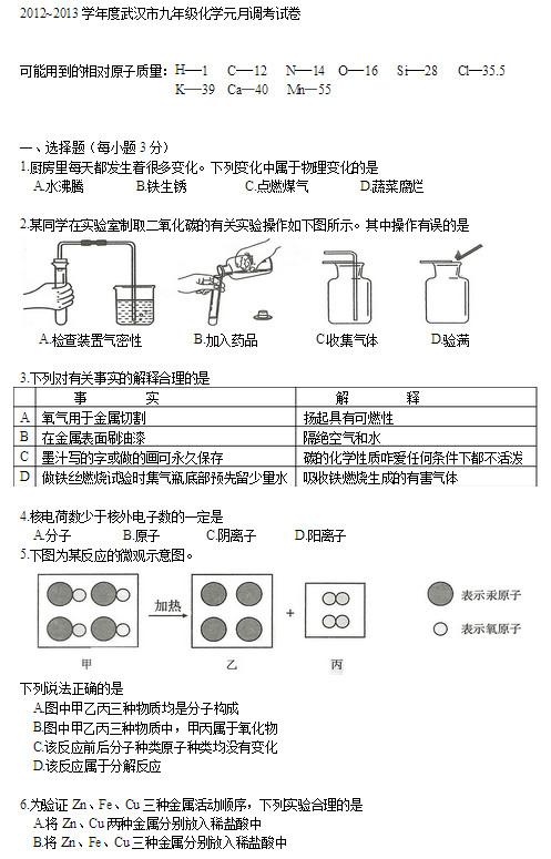 2013武汉初三元月调考化学试卷及答案(图片版)