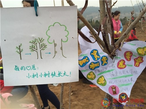 青岛爱莉斯小哈佛幼儿园举行春游植树活动