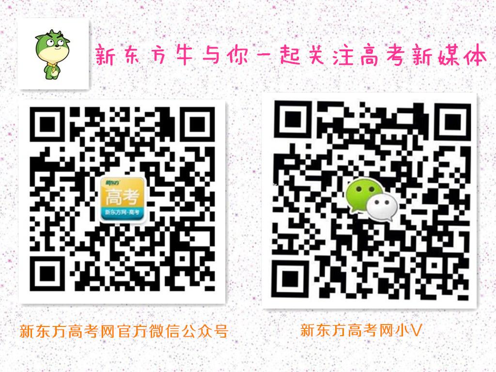 新东方高考频道新媒体
