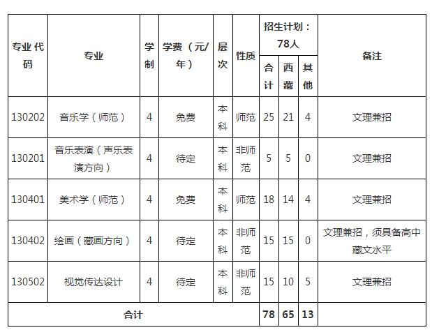 2017西藏大学艺术类招生专业