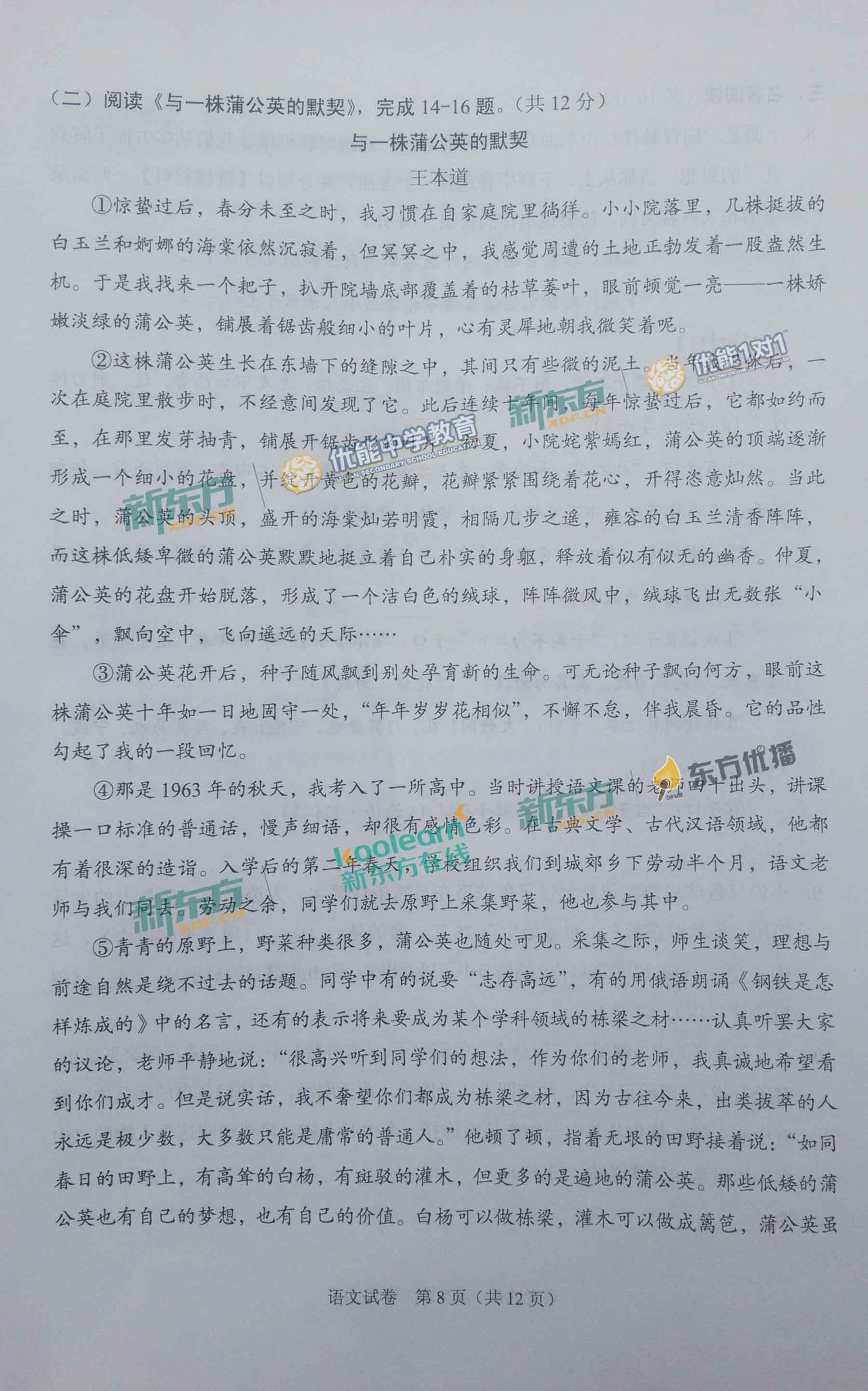 2017北京中考现代文阅读真题《与一株蒲公英的默契》