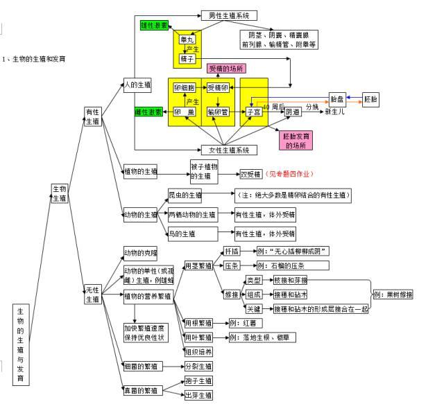 中考生物知识点结构图分类整理:生物的生殖发育与遗传