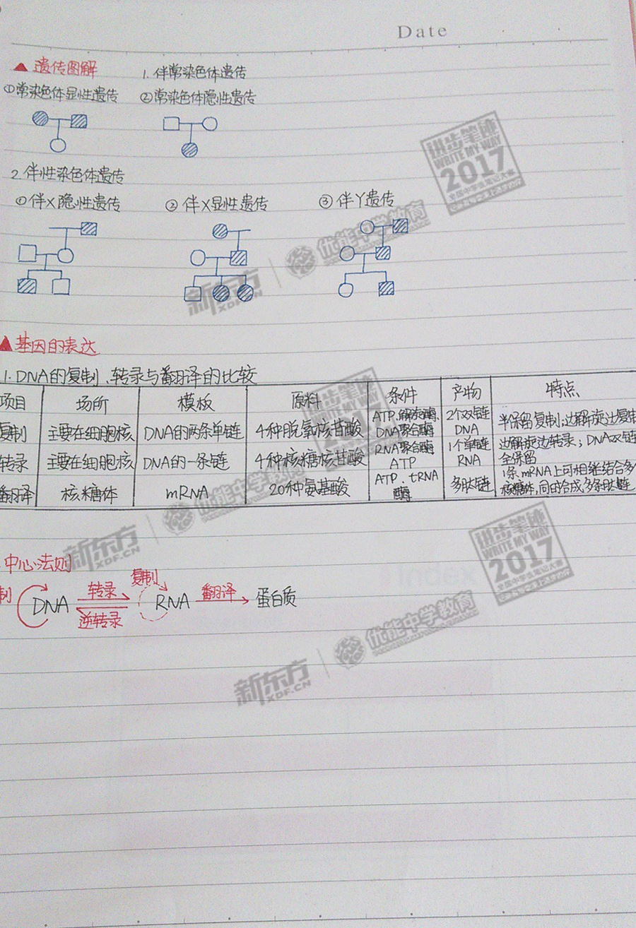 2017年全国中学生笔记大赛优秀作品展(广州优能中学)