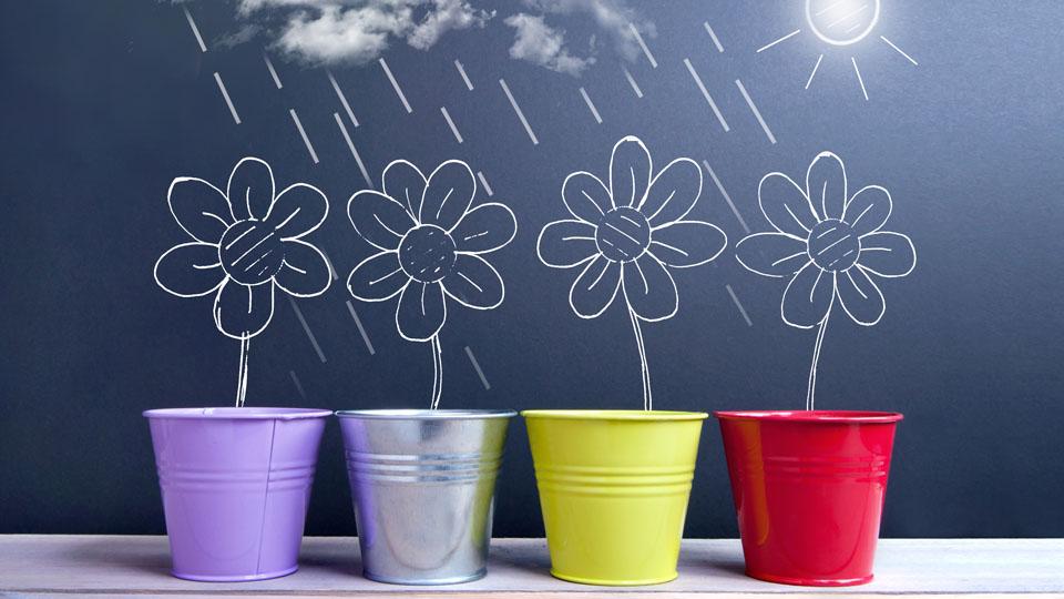 小测验 —描述春季气候的常用词语