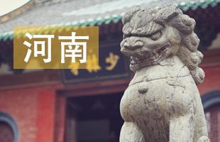 2019河南省中考录取结果查询