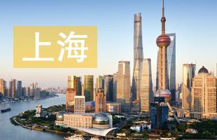 2019上海中考录取结果查询