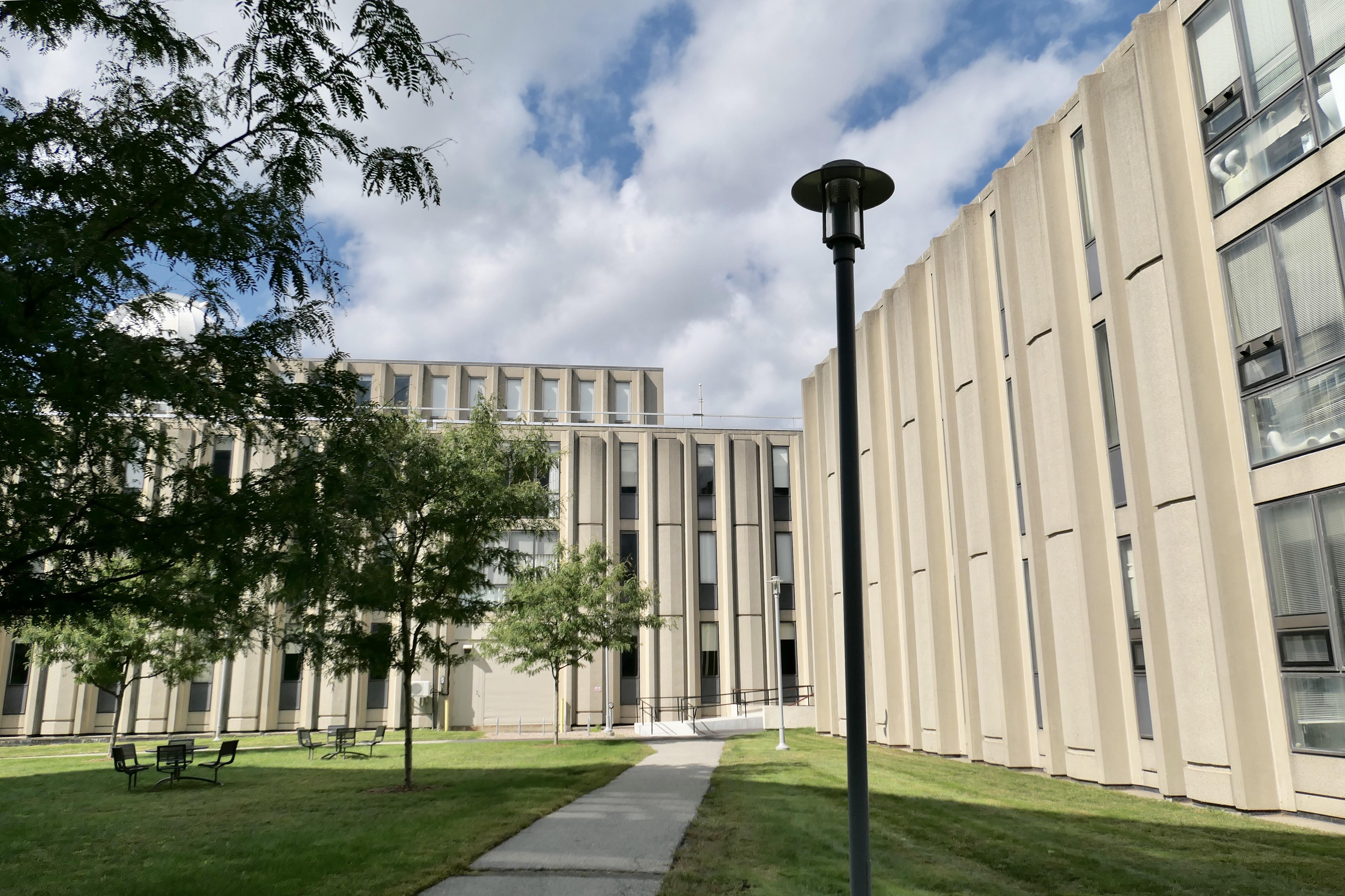 布兰迪大学
