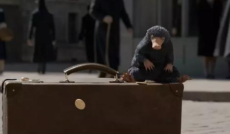 【新东方口译】《神奇动物在哪里2:格林德沃之罪》来了!