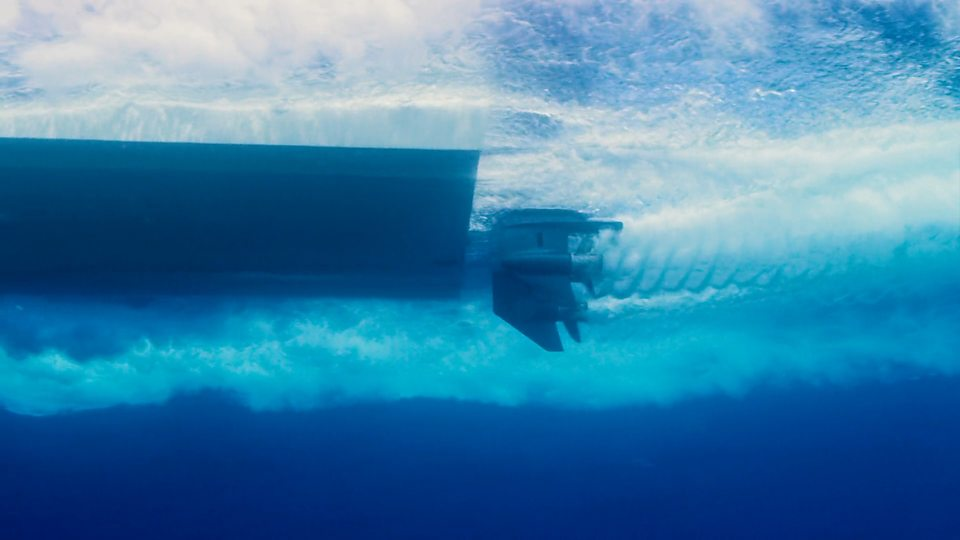 Underwater sound pollution水下乐音净化危及陆地生物的听力康健
