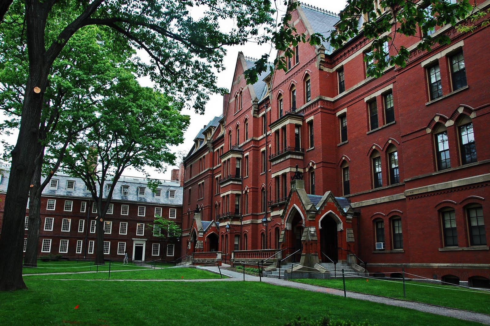 德国的法兰克福有什么值得留学的学校?