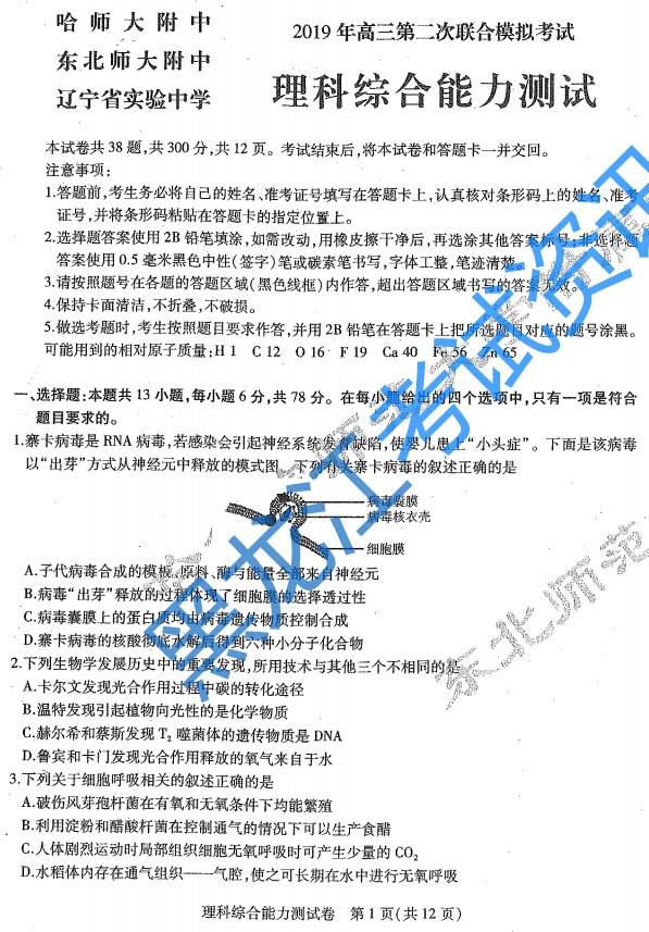 2019东北三省三校二模理综试题答案解析