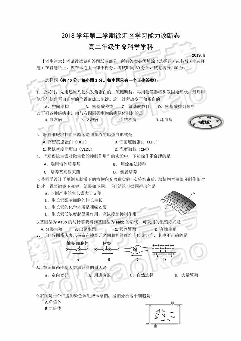 2019上海徐汇二模生命科学试题答案解析