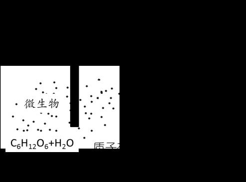 高考化学试题