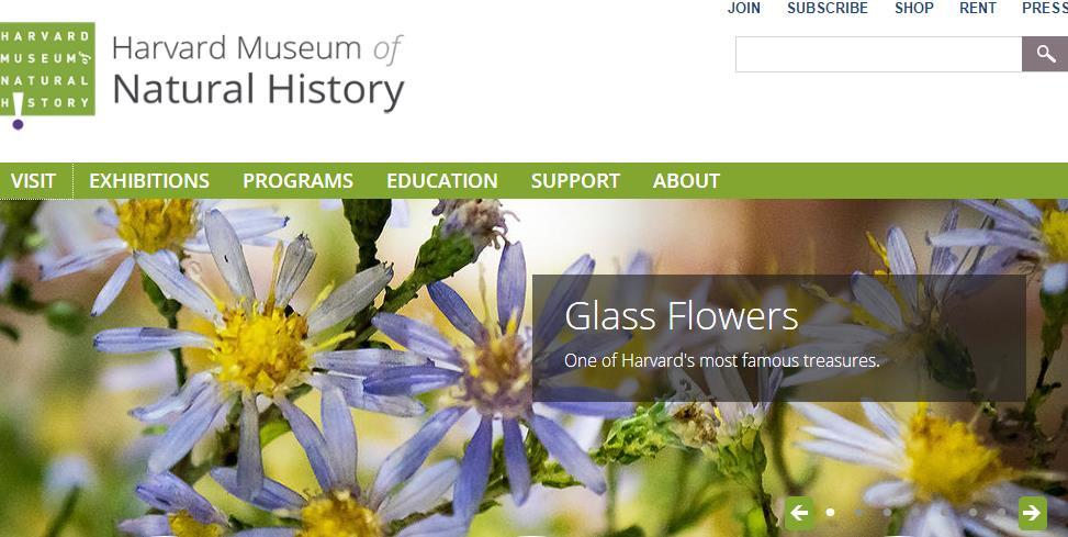 国际博物馆日 带你看一看外国大学里的博物馆