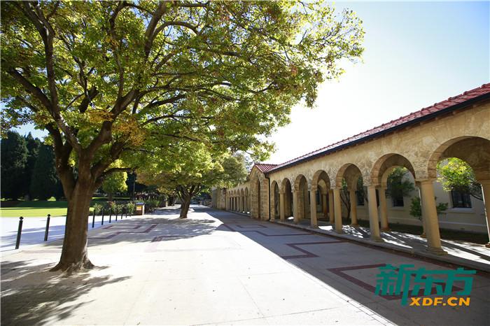 西澳大学校园一角