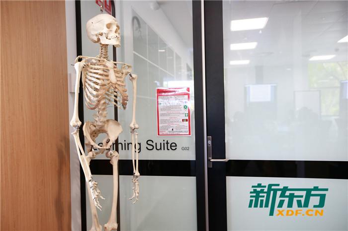 西澳大学医学院实验室2