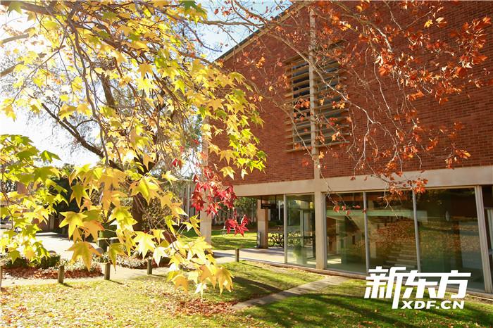 澳国立大学校园景色1