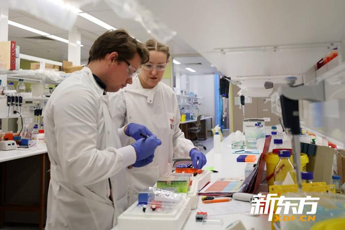 转化医学研究院里正在做实验的两位科学家