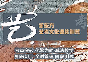 郑州艺考文化课集训营