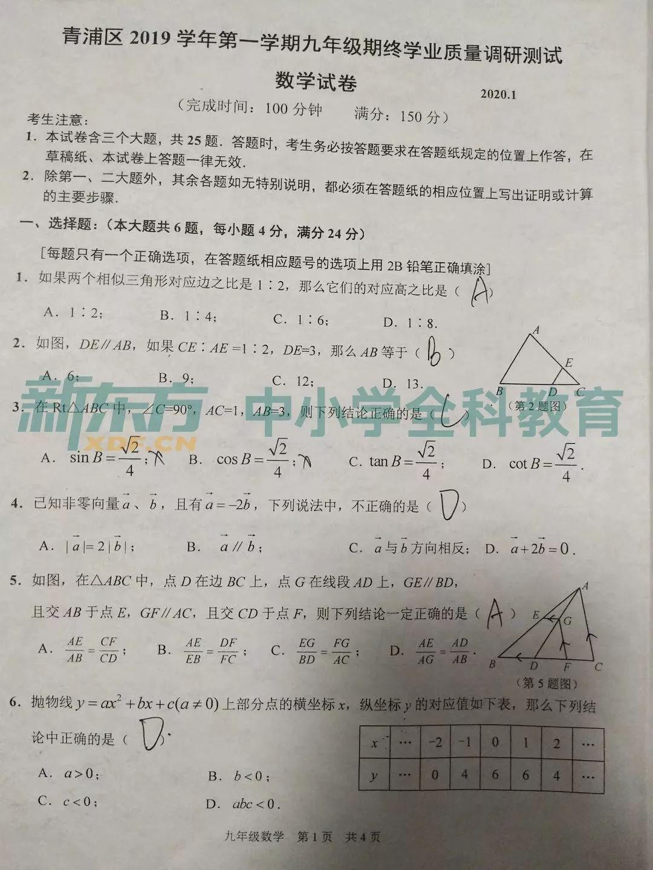 2020上海青浦中考一模数学试题及答案解析