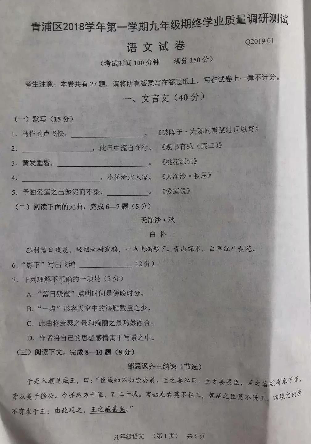 2020上海青浦中考一模语文试题及答案解析