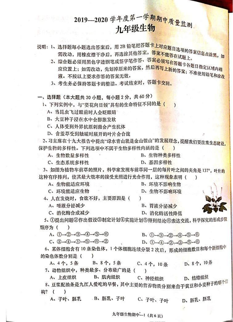 2019-2020揭阳惠来县初三期中生物模拟试题及答案(PDF下载版)